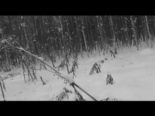 Зимняя охота на зайца с русской гончей