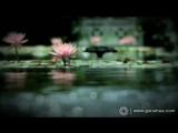 Prayer - A Prayer of Love - Prabhu Ji Mori Binti Suno - Indian Devotional Song