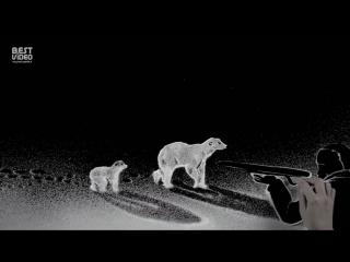 Художница по песку - трогательный ролик в поддержку белых медведей