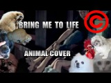 Evanescence - Bring Me To Life (Animal Cover) REUPLOAD