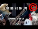 Evanescence - Bring Me To Life (Animal Cover) [REUPLOAD]