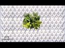 [GADGET] 📣 PLUG PLANT Verde Vertical