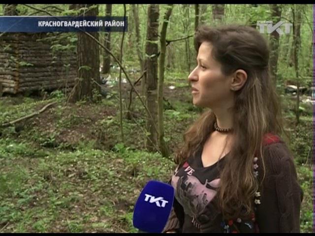 30.05.2017 Леших и русалок попросят освободить домик в лесу