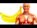 Что Произойдет с Вашим Телом Если Вы Будете Съедать 2 Банана в День