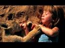 Мы единый организм люди природа животные мир