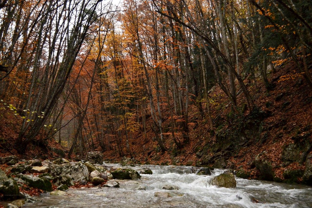 «Золотая осень» или «Крымский экстрим» Автор - Гура Екатерина