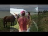 Истрия 'как мы убегали от лошади'