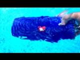 JBL CHARGE2+ тест водонепроницаемости!