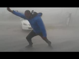 «Преследователи шторма» против урагана «Ирма»