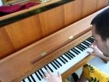 Sander Van Doorn &amp Martin Garrix &amp DVBBS feat. Aleesia - Gold skies ( Piano arrangement by Danny )