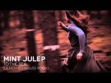 Mint Julep - To The Sea (Ulrich Schnauss Remix)