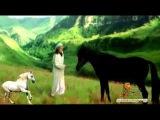 Евгений Алтайский Вольный конь