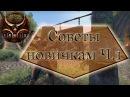The Elder Scrolls Online СОВЕТЫ Ч1 Гильдии Магов Бойцов Бесстрашных Сброс навыков Качаем коня
