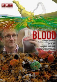 BBC: Удивительный мир крови / The Wonderful World of Blood with Michael Mosley (2015)