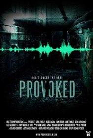 Спровоцированный / Provoked (2016)