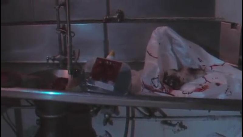 Ночь Мертвецов: Жизнь после смерти (2006)