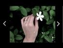 ใครเจ็บกว่า - ETC. [Official Music Film] Ко Чанг Азия - Ваш Тропический Рай