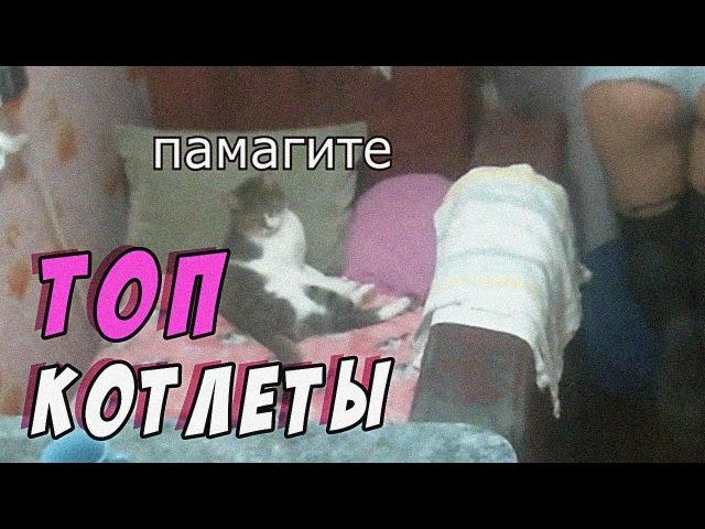 Топ моменты с Твича 20 | ЛУЧШИЙ ВЫПУСК (нет) | Кегля минус лёгкие | Баба кошка (еб*ну ...