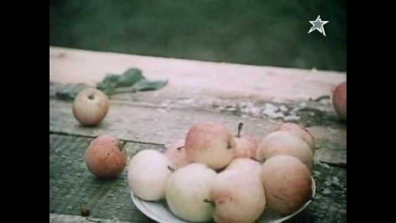 песня Я колхозница, меня любить нельзя из фильма Садовник 1987 года