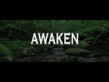 Alan Watts ~ Are You Ready to 'Wake Up'