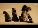 John 00 Fleming - Spirit Awaking (Original Mix) [Promo Video]