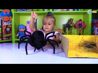 ПАУК ЧЕРНАЯ ВДОВА распаковка игрушки на Радио управлении от Ярославы Black Widow Spider Unboxing