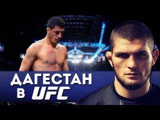 ТОП 5 ДАГЕСТАНСКИЕ БОЙЦЫ В UFC!