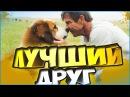 Собачья жизнь/Цель и жизнь собакиA Dogs Purpose 2017 - обзор фильма и мое мнение