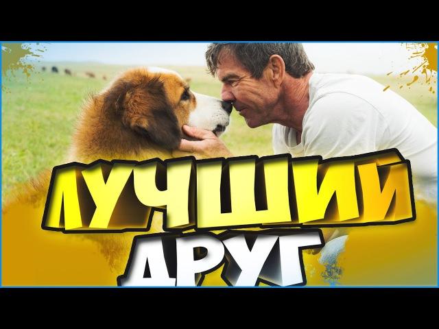 Собачья жизнь Цель и жизнь собаки A Dog's Purpose 2017 обзор фильма и мое мнение