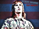 'So Many Soldiers', by Ian Brown
