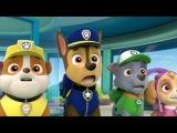 Щенячий патруль на русском (HD) 3 серии подряд Щенки спасают зуб и встречают Крепыша