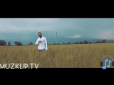 Бабек-Мамедрзаев - КАРИНА (2017 CKORO)