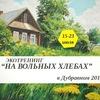 """ЭкоТренинг в Дубравном-2017 """"На вольных хлебах"""""""