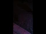 Мысли Чикатило - Live