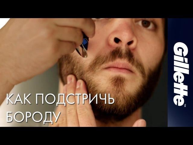 Как Подстричь Бороду: Советы по Уходу за Бородой | Gillette STYLER » Freewka.com - Смотреть онлайн в хорощем качестве