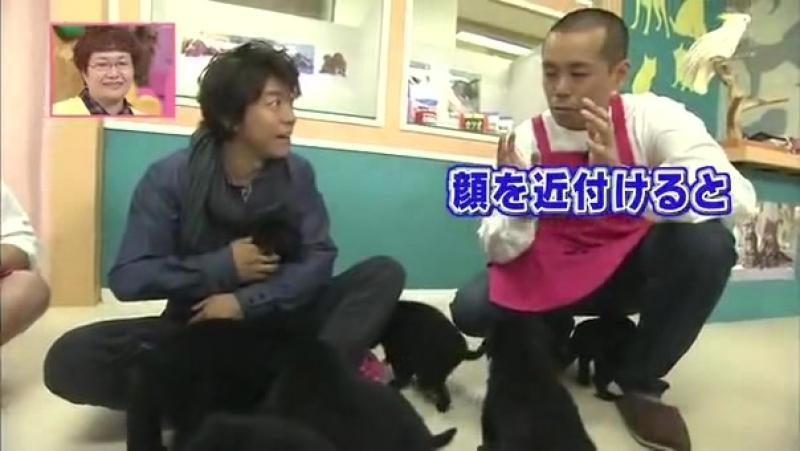 Камикава Такая с животными ч.1 【天才!志村动物园】