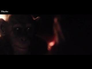 Планета обезьян 3 - Война 2017 полный фильм боевик смотреть онлайн на русском языке