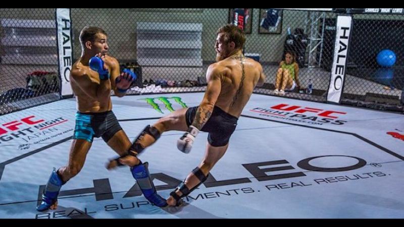 Конор МакГрегор : бокс, грэпплинг, работа по груше.