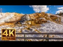 4K Nature relaxation video -Yellowstone National Park,Summer/3 HRS of Relaxation with Nature Sounds