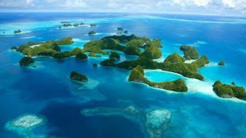 Австралия и Океания. Чудеса голубой планеты. Семь континентов \ Animal planet HD