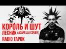 Король и Шут Лесник A cappella cover by Radio Tapok