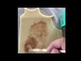 Как украсить песочное печенье обычным какао порошком