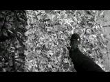 Клип Антиреспект - Осень