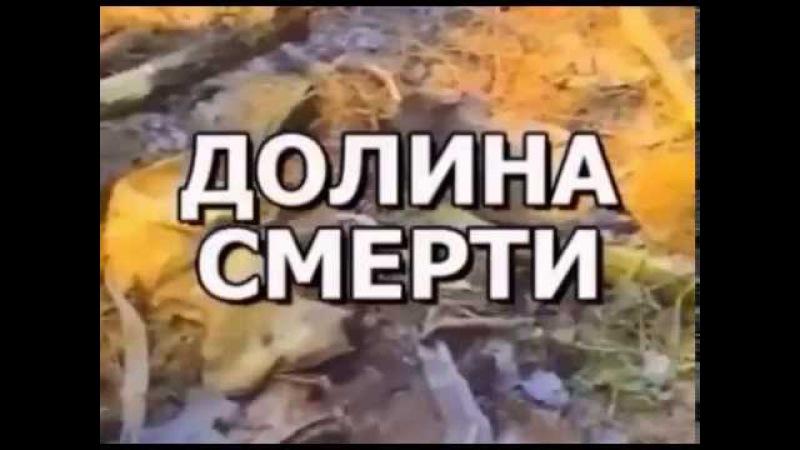 Долина смерти Эхо войны Число охотника (Дмитрий Бурлачков)