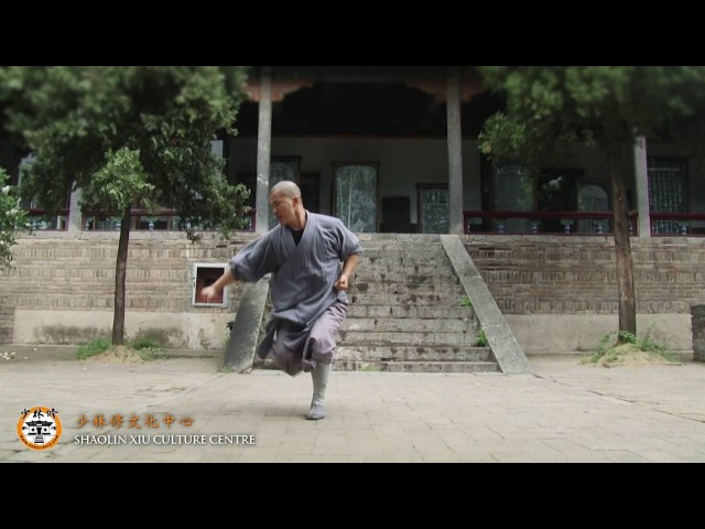 Qi Xing Quan - Shifu Yan Chong