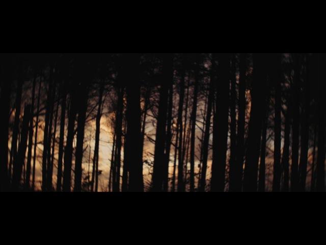 Bing Ruth - Starwood Choker (Official Video)