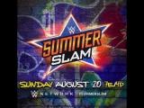 I'm With Brock Lesnar vs. Roman Reigns vs. Braun Strowman vs. Samoa Joe