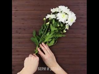 Как создать радужные цветы.💐😍