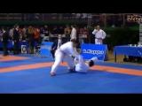Олимпийское каратэ WKF - combatmarkt.com