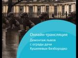 Львов с ограды дачи Кушелевых-Безбородко демонтируют для реставрации. Онлайн-трансляция